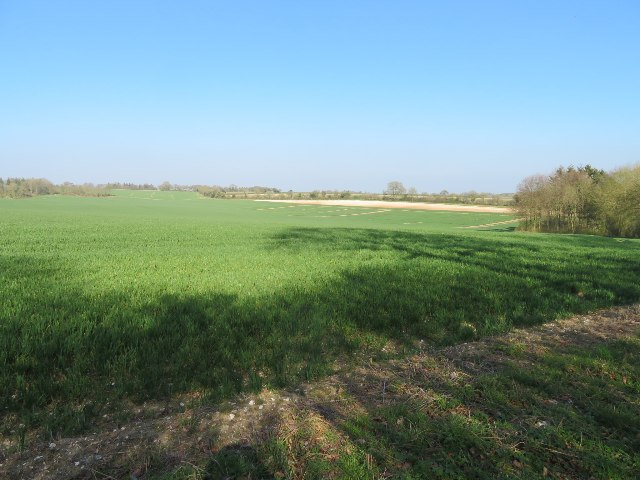 Farmland north of Lockley Copse