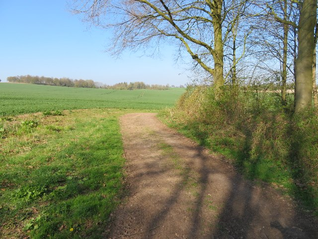 Farmland north of Lockley Copse