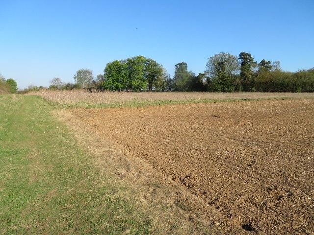 St John's Field