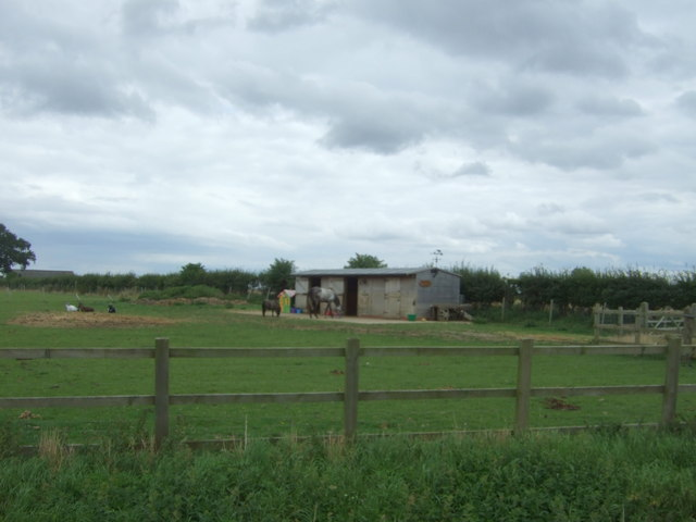 Grazing and stables off Horseley Fen Middle Drove