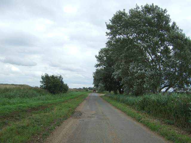 Long North Fen Drove