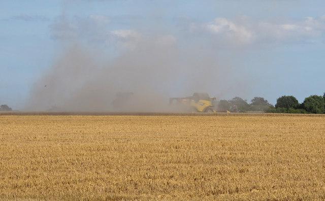 Combine Harvester near Rowes Farm, Willingale