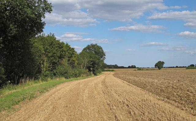 Recently Harvested and Tilled Wheat Field, Berners Roding