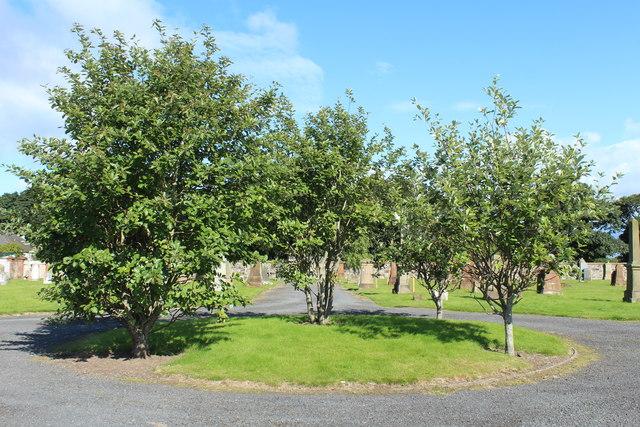 Trees at Shewalton Cemetery