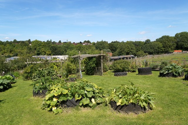 Cottage garden area at Bocketts Farm, Fetcham