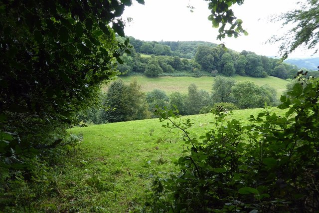 A valley above the Wye Valley