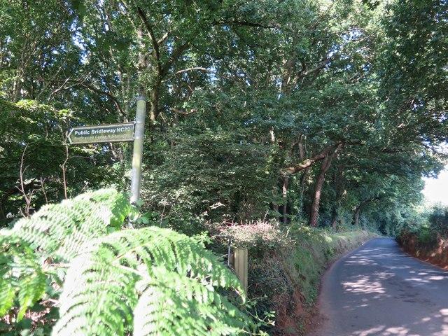 Public Bridleway NC20 entering Borthwood Copse, Isle of Wight