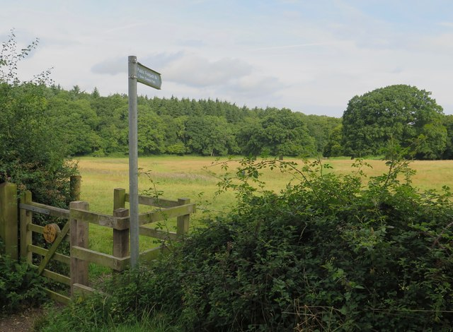 Public footpath R4 towards Quarr, Isle of Wight