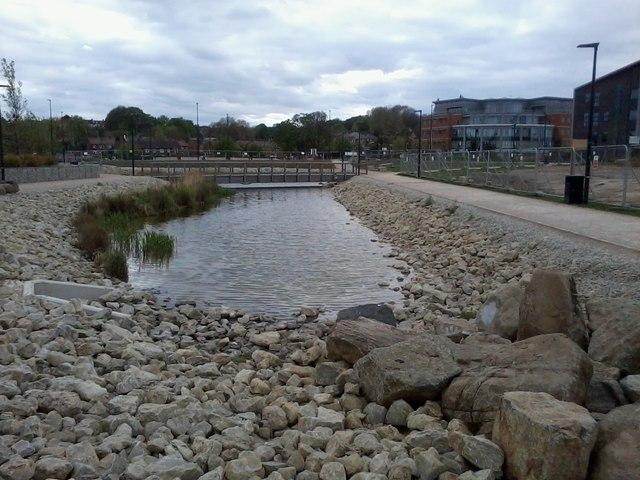 Pond beside Dynamo Way
