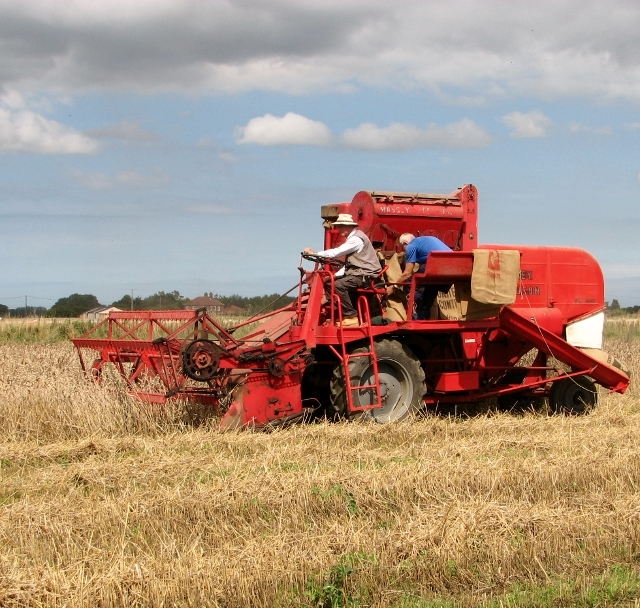 Harvesting with a combine in bygone days
