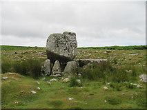 SS4990 : Arthur's Stone/Maen Ceti by David Tyers