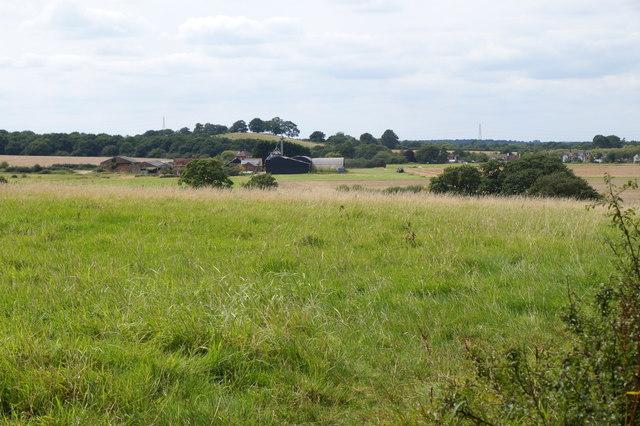 Rushett Farm from the edge of Epsom Common