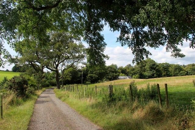 Drumhead driveway