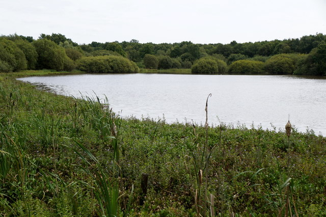 Great Stew Pond, Epsom Common