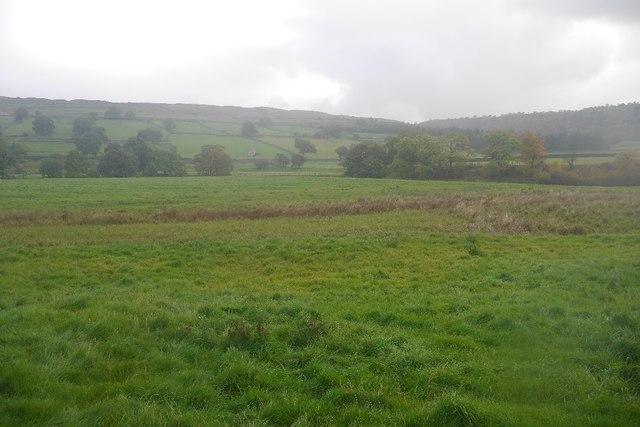 Pasture, Wharfedale