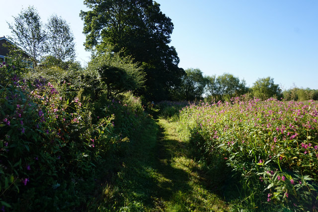 Path leading to Fulford