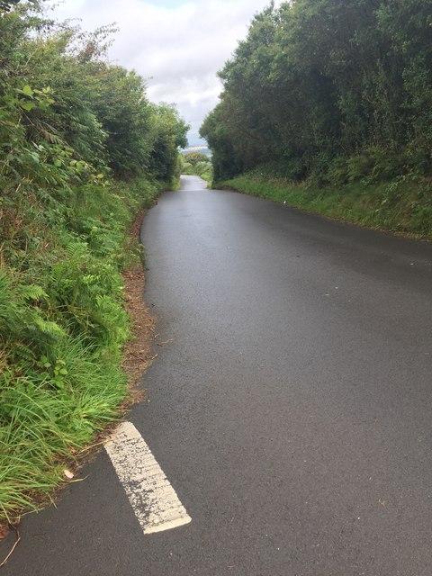 Llwynmawr Road