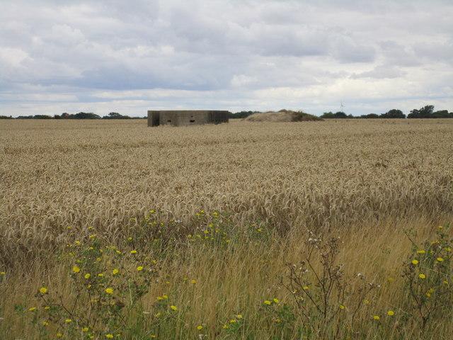 Pill box in a wheatfield