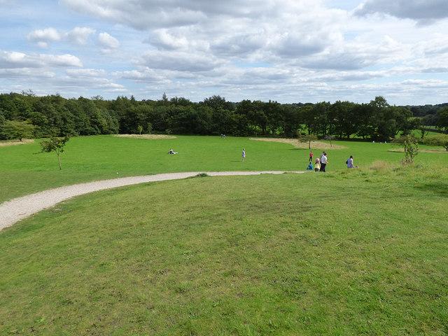 Open grassland, Golden Acre Park
