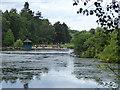 SE2741 : Wildfowl lake, Golden Acre Park by Stephen Craven