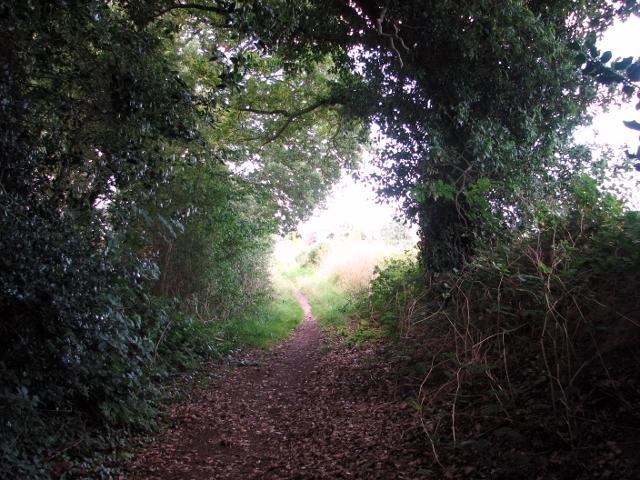 Approaching The Street from Shepherd's Lane