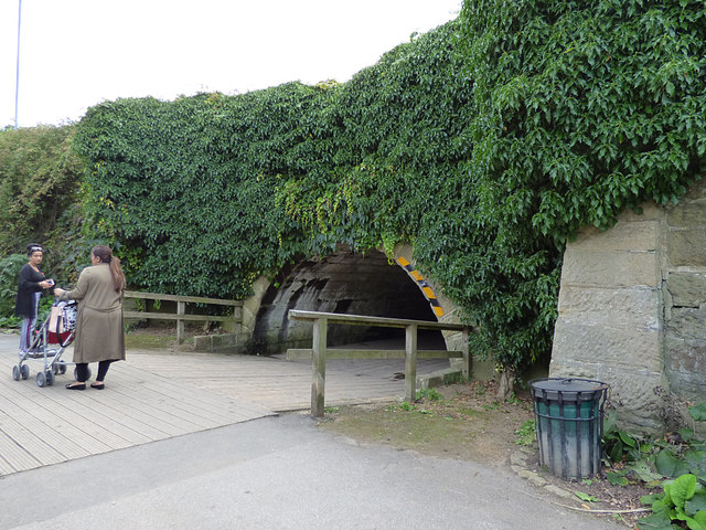 Subway under Otley Road, Golden Acre Park
