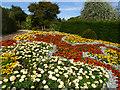 SE2641 : Flower display, Golden Acre Park by Stephen Craven