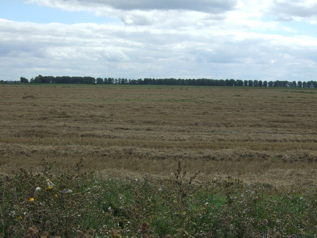 Recently harvested field south of Dam Bank Drove