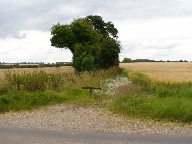 Bridleway towards Woodmancott Down