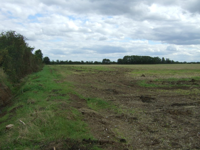 Field beside Alboro Close Drove
