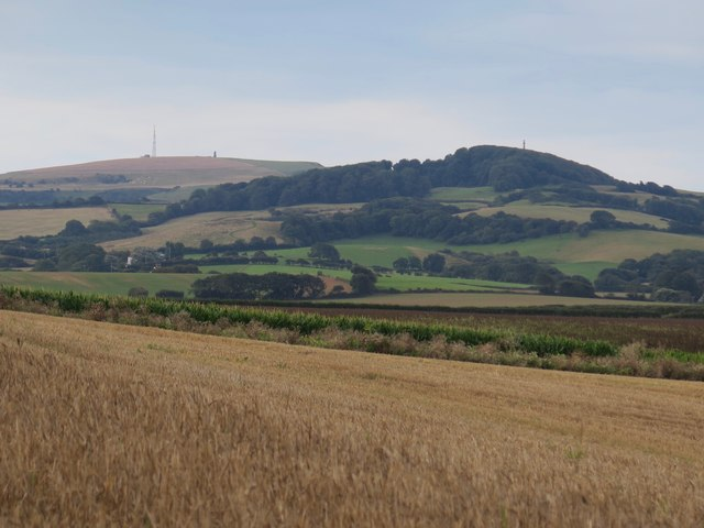 View towards St Catherine's Down