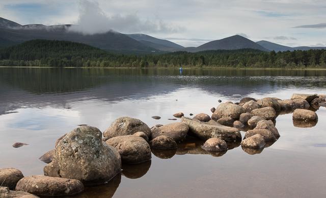 Stones at the shoreline in Loch Morlich