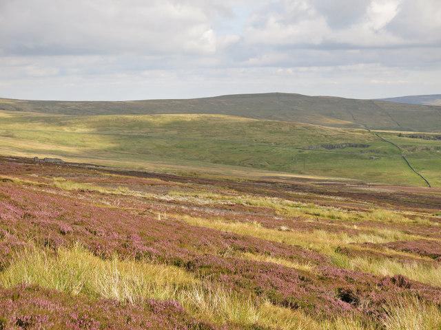 Puddingthorn Moor