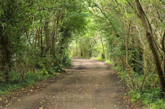 The Thames Path at Ham Lands