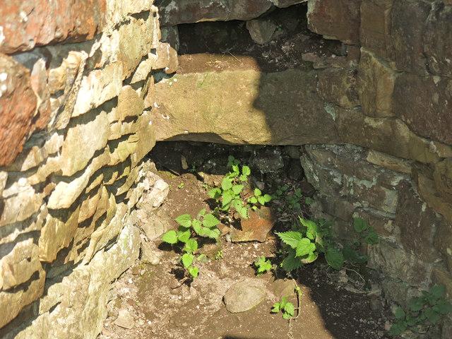 Lime kiln near High Greenfield - draw hole