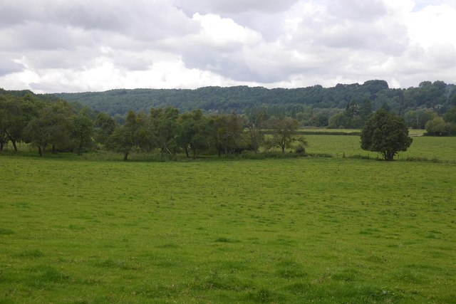 View towards Dinmore Woods