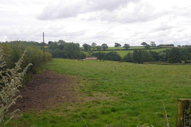 Field, Wolferlow