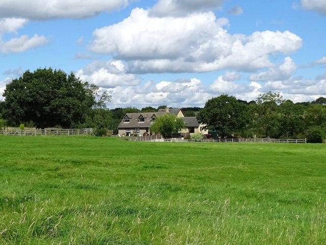 Ridge and furrow at Spring Oak Farm
