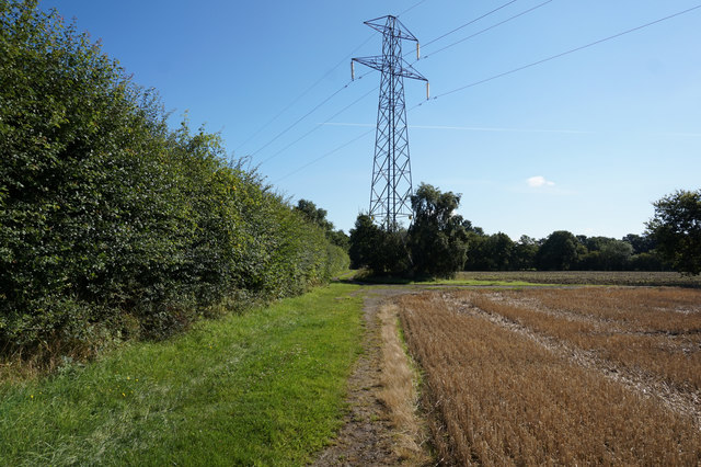 Minster Way towards Heslington Common