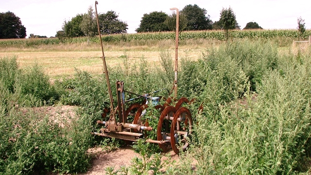 Farm implement surrounded by weeds