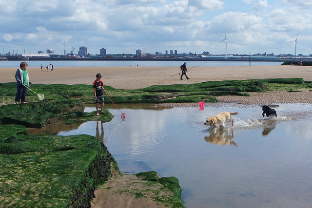 New Brighton Beach activity