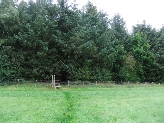 Footpath to Hodge Wood