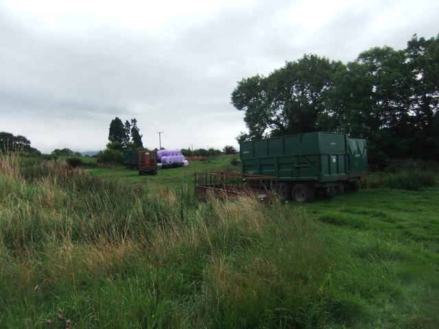 Purple wrapped hay near Newby