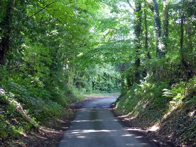 Mile Lane near Frog's Hole