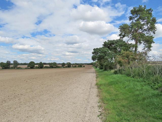 Footpath to Six Mile Bottom