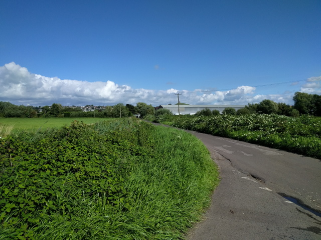 Lane heading for Glastonbury