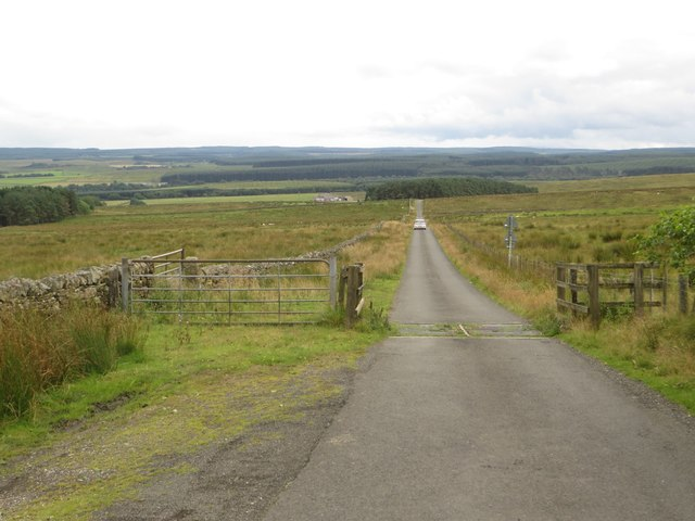 Cattle grid on the road north of West Highridge