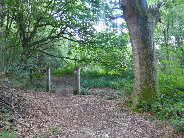 Old path gate, Gravel Pit Wood