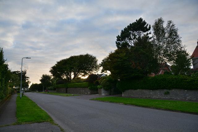The Mumbles : Higher Lane