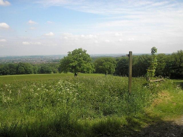 Kitchenflat Wood view